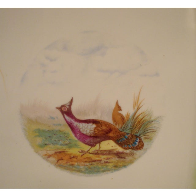 Late 19th Century Antique Austrian Game Bird Serving Platter For Sale - Image 5 of 7