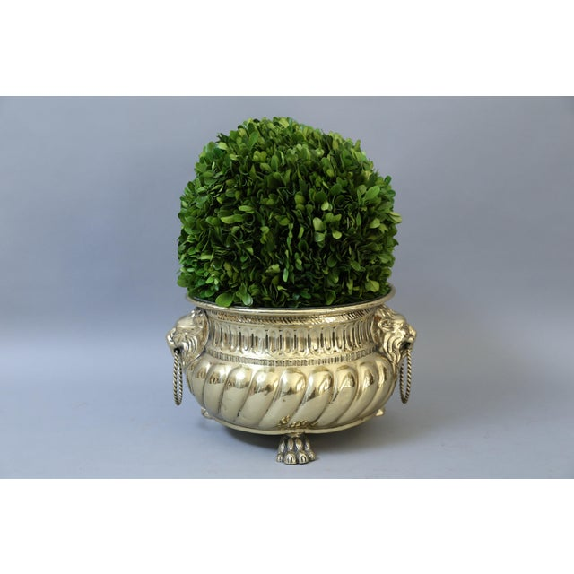Early French Brass Jardiniere with Original Zinc Liner - Image 4 of 7