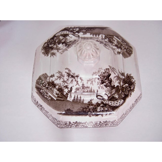 English Antique Brown & White Transfer Staffordshire Covered Vegetable For Sale - Image 3 of 8