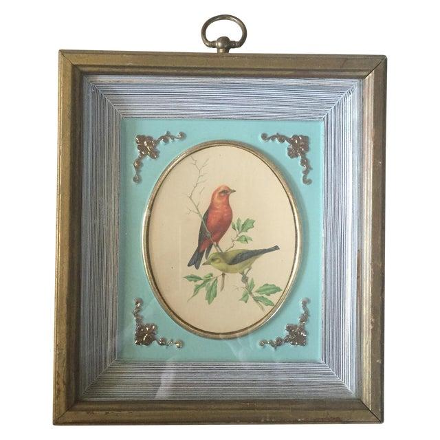 1958 Framed Bird Print - Image 1 of 9