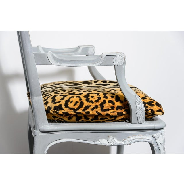 French Painted Regence Style Caned Chairs With Leopard Velvet Print For Sale - Image 4 of 13