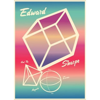2013 Contemporary Music Poster - Edward Sharpe and the Magnetic Zeros For Sale