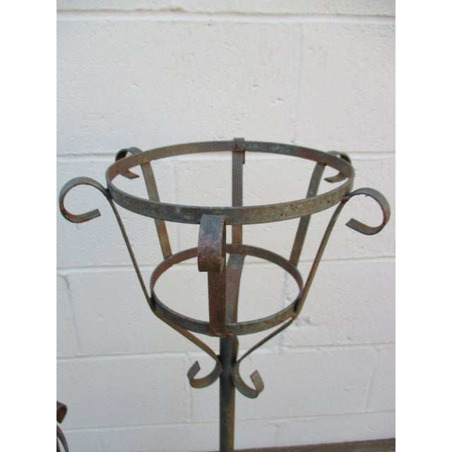 French Mediterranean Iron Planters - A Pair - Image 9 of 9