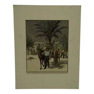 "Harper's Weekly ""The New Orleans Exposition, Planting Trees"" Print by T. De Thulsrump For Sale"