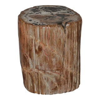 Designer Quality Ancient Petrified Wood Side Table For Sale