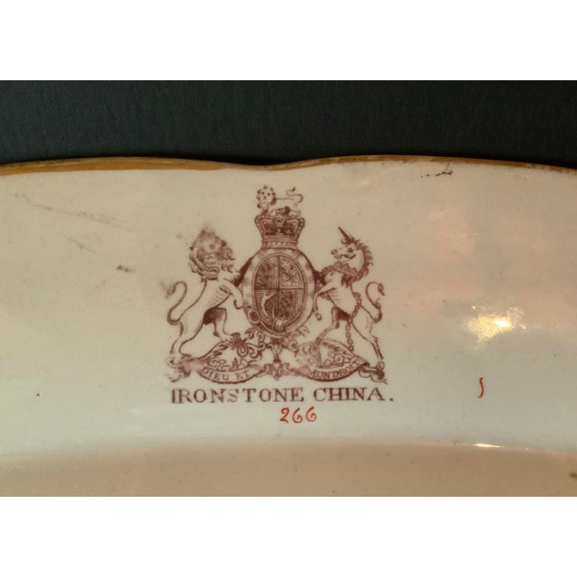 Ceramic Antique Ironstone China Hand Painted Platter For Sale - Image 7 of 9