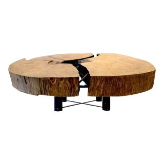 Monumental Brazilian Amazon Mirindiba Wood Tree Trunk 2016 Sculpture Table Base