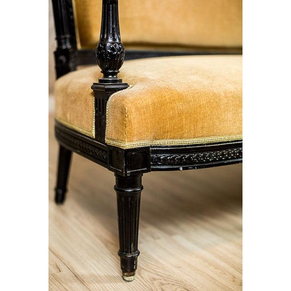 Antique Sofa from the Mid. 19th c. For Sale - Image 10 of 13