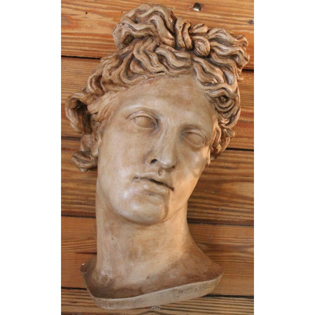 "Plaster ""Apollo Belvedere"" Wall Plaque For Sale - Image 10 of 10"
