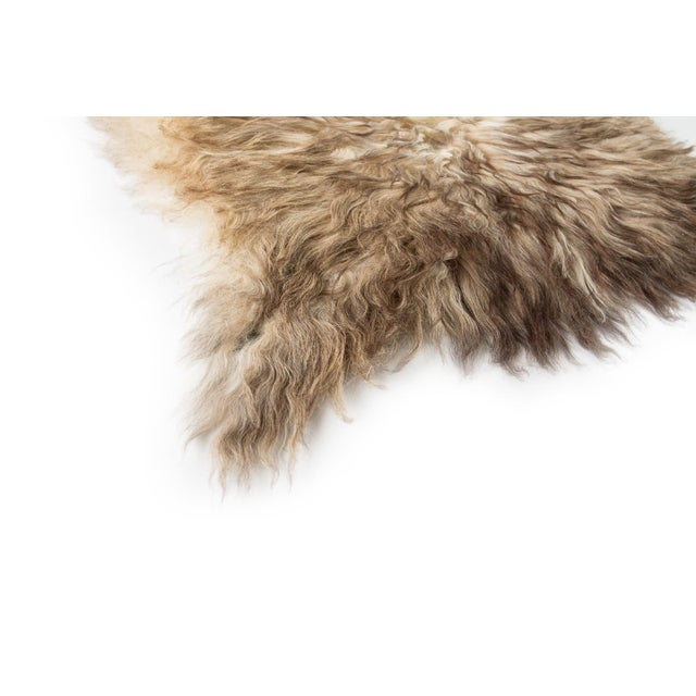 "Contemporary Natural Wool Sheepskin Pelt - 2'0""x3'0"" For Sale - Image 4 of 7"