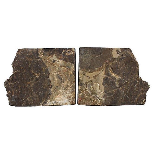 Vintage Petrified Wood Bookends For Sale - Image 9 of 10
