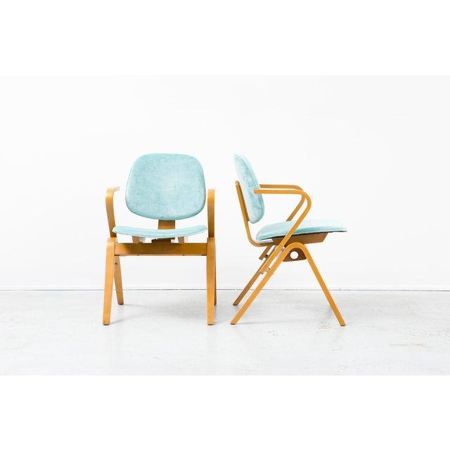 Set of Joe Atkinson Chairs - Image 4 of 11