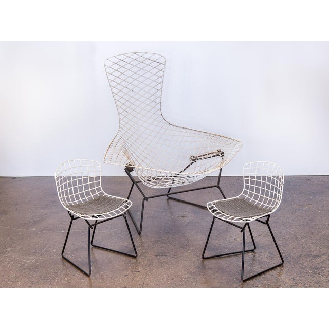 Baby Bertoia Chairs - a pair For Sale - Image 9 of 9