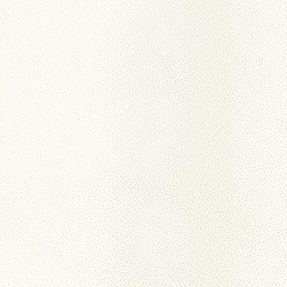 Sample - Schumacher Shagreen Wallpaper in White Pearl For Sale