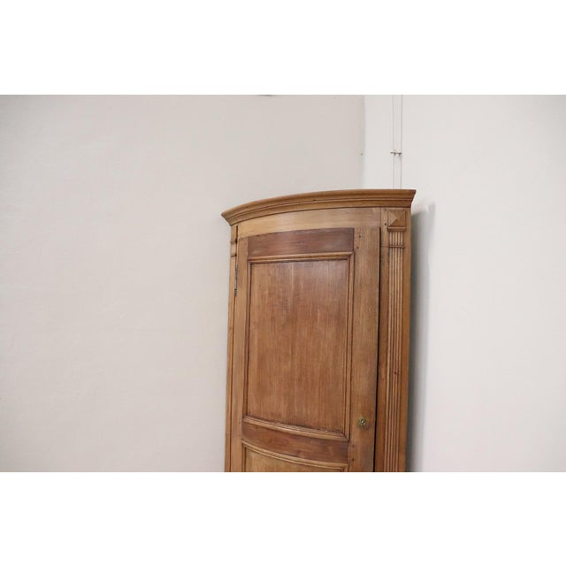 Wood 19th Century Italian Solid Chestnut Large Corner Cupboard or Corner Cabinet For Sale - Image 7 of 11