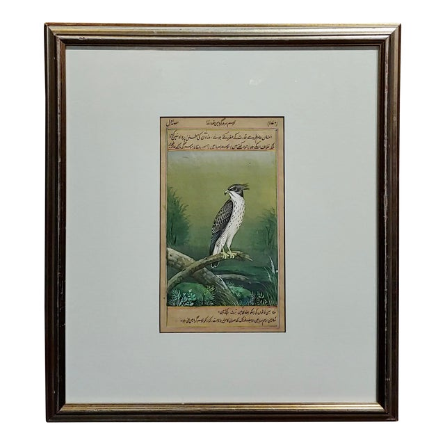 18th Century Antique Middle Eastern or Persian Falcon Painting W/Calligraphy For Sale
