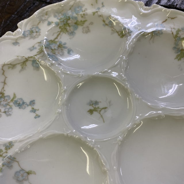 Early 21st Century Haviland Limoge Oyster Plate For Sale - Image 5 of 7