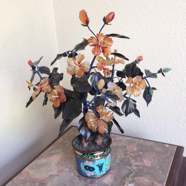 Vintage Flowering Jade Tree in Cloisonné Planter - Image 2 of 6