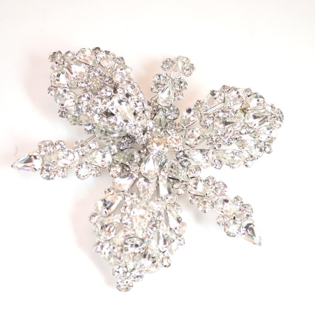 Massive Elsa Schiaparelli Crystal & Rhodium Orchid Brooch & Earrings, 1950s For Sale - Image 4 of 13