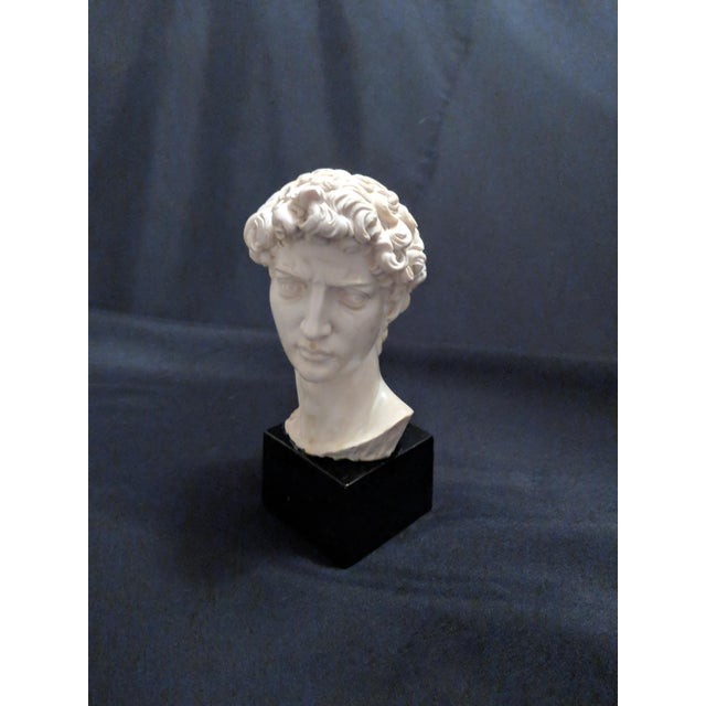 """1960s A. Giannelli Alabaster Sculpture Bust of """"David"""" Marble Base For Sale - Image 5 of 7"""