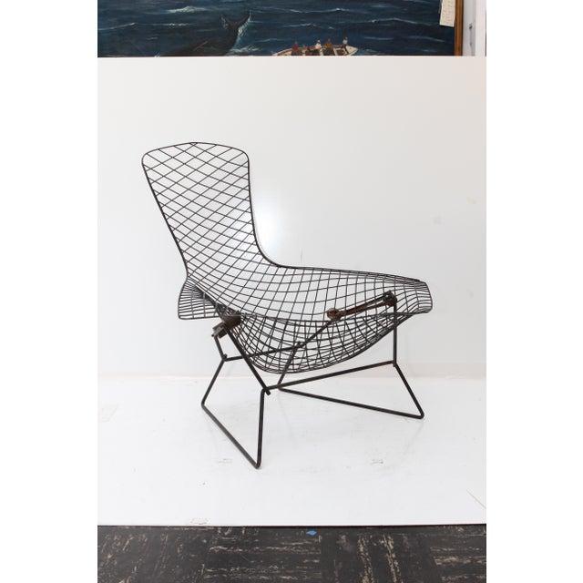 Knoll Bertoia Bird Chair - Image 11 of 11