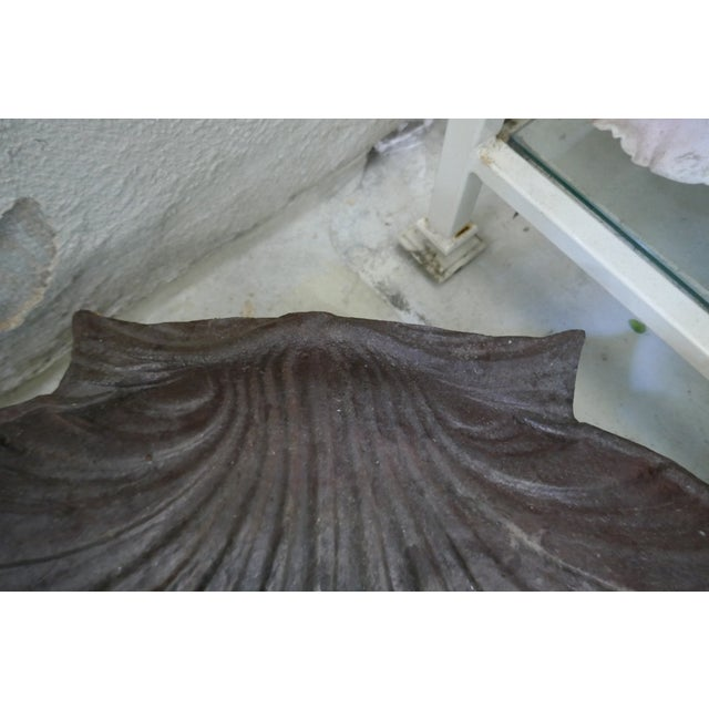 Antique Large Cast Iron Shell For Sale - Image 4 of 5