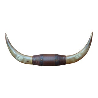 Vintage Mounted Horns Wrapped in Leather For Sale