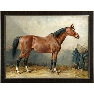 Mecklenburger Horse by Eerelman Framed in Italian Wood Vener Moulding For Sale