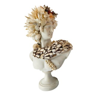 Medium Apollo Shell-Encrusted Bust For Sale