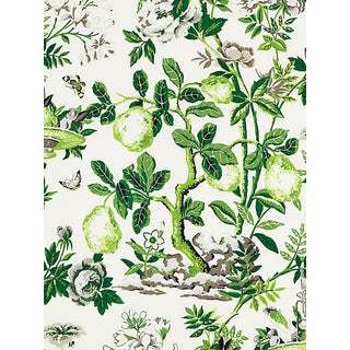 Sample, Scalamandre Shantung Garden, Verdance Fabric For Sale