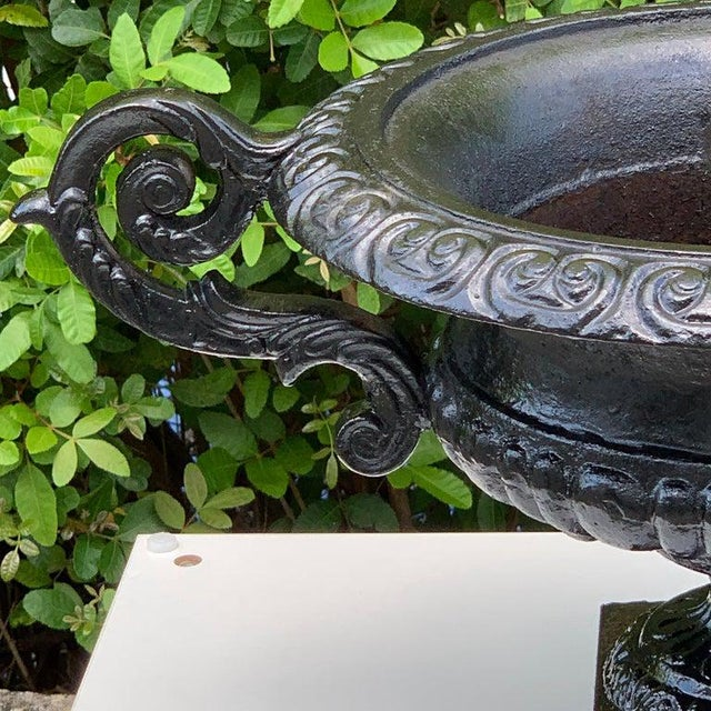 Pair of Handled Cast Iron Campana Garden Urns, in Black. Each one raised on a 6-Inch square base with a 6-Inch deep and...