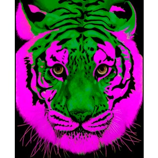 Bicolor Tiger Contemporary Archival Fine Art Print For Sale
