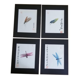 1950s Hand Painted Insect Study Paintings - Set of 4 For Sale