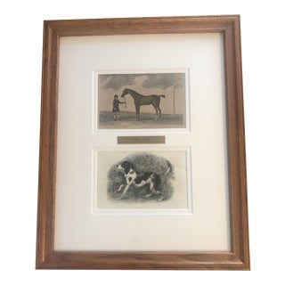 1887 Painted Etching Equestrian With Dog Print For Sale