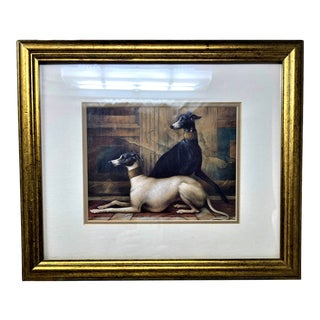 Antique Gold Frame Vintage Greyhound Dogs Lithograph Art For Sale