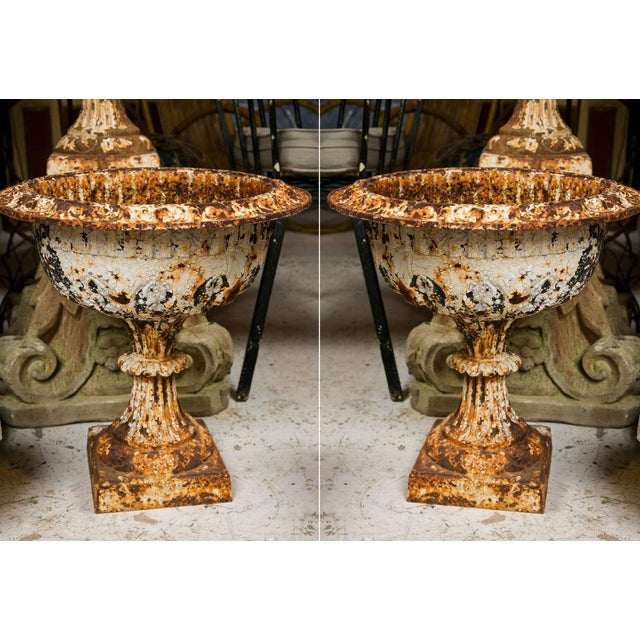 19th Century Iron Garden Urns - a Pair For Sale - Image 10 of 10