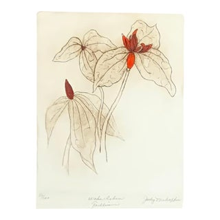 """20th Century Jody Mehaffie """"Wake Robin Trillium"""" Hand Colored Etching For Sale"""