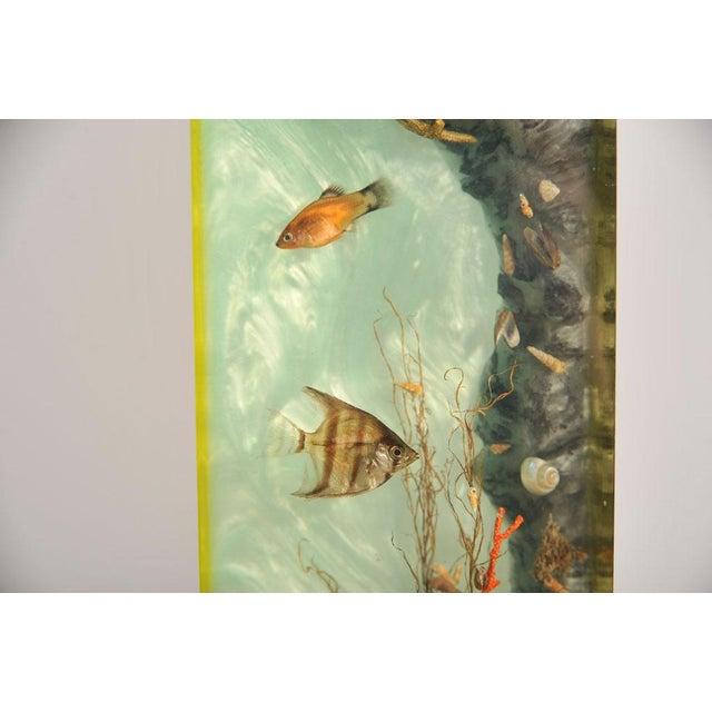 """Italian Lucite Lighted """"Under-the-Sea"""" Aquarium Sculpture - Image 7 of 7"""