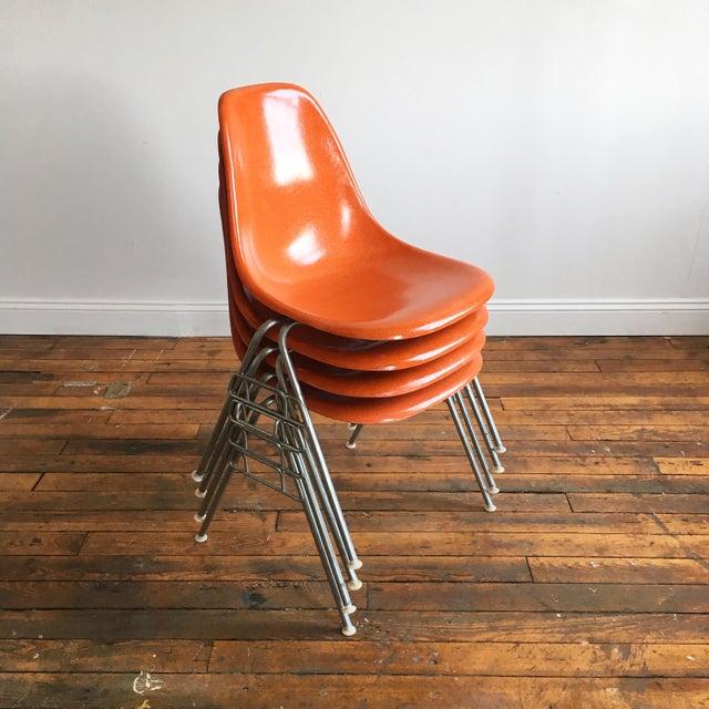 Mid-Century Modern 1960s Vintage Herman Miller Eames Orange Fiberglass Shell Chairs - Set of 4 For Sale - Image 3 of 11
