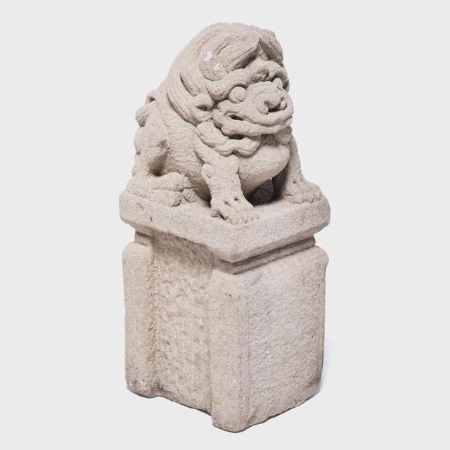 Early 19th Century 19th Century Chinese Lion Dog Protector For Sale - Image 5 of 6