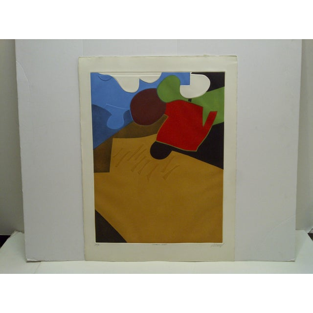 """Limited Edition -- Signed Numbered (26/50) Print -- Titled """"Topographic Agraire"""" -- by Donny For Sale - Image 9 of 9"""