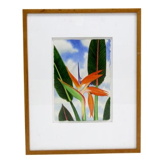 Bird of Paradise Watercolor