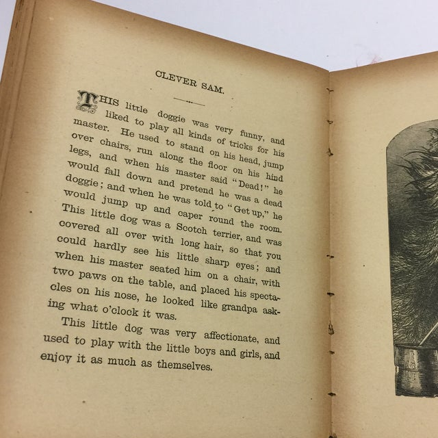 "1889 ""Happy Children "" Lithographs Book For Sale - Image 12 of 13"