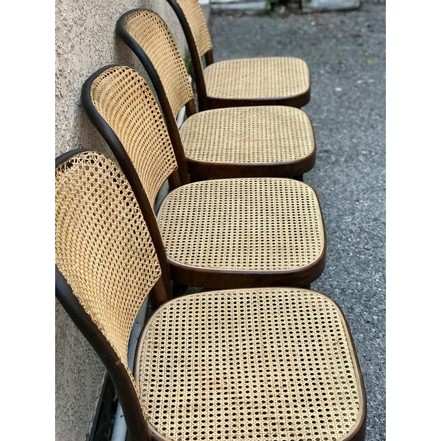 1930s Vintage Thonet Caned Cafe Chairs- Set of 4 For Sale In Los Angeles - Image 6 of 9