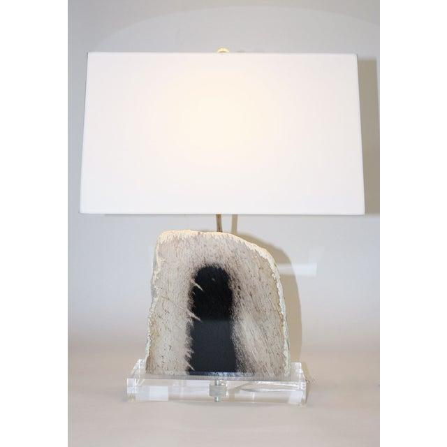 Petrified Palm Wood Lamp - Image 2 of 2