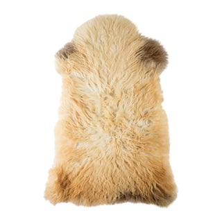 "Contemporary Natural Sheepskin Pelt - 2'1""x3'5"" For Sale"