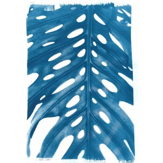 Perfect Fruit Salad Plant Leaf, Handmade Cyanotype Print on Watercolor Paper. Limtid Edition For Sale