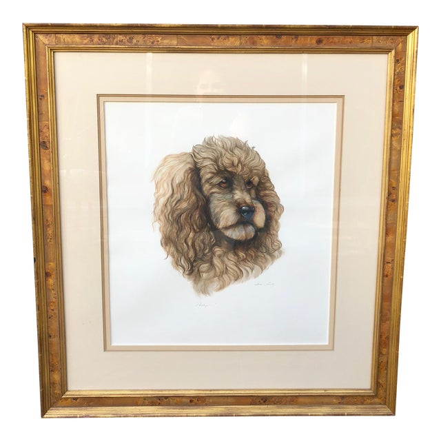 Vintage Artist Rendered Poodle Portrait Drawing in Burl Walnut Frame For Sale