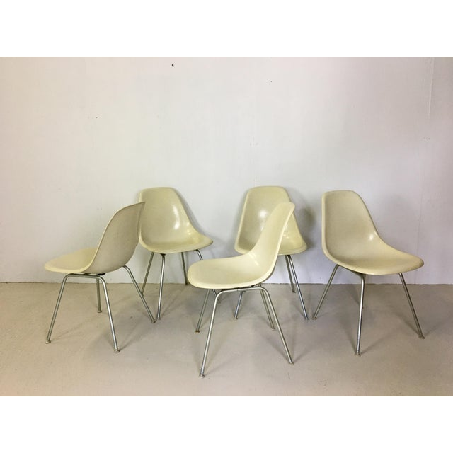White Five Fiberglass Eames Shell Chairs for Herman Miller For Sale - Image 8 of 8