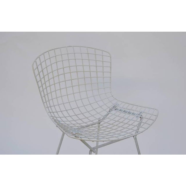 1950s Set of Four Original Wire Chairs by Harry Bertoia for Knoll For Sale - Image 5 of 7